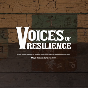 Voices of Resilience Exhibit